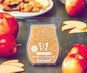 wax, scentsy, and wax melts image
