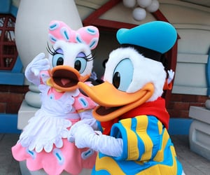 photography, daisy duck, and aesthetic image