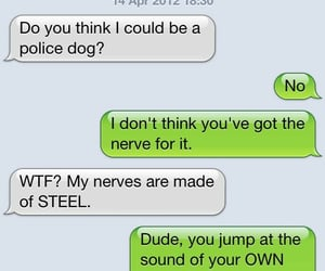 dog farts, texting dog, and nerves of steel image