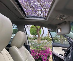 aesthetic, car, and floral image