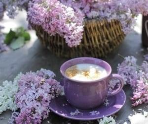 coffee, lila, and lilac image
