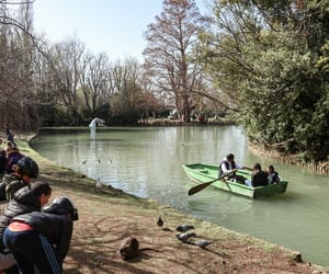 boat, park, and river image