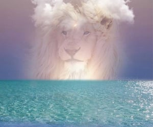 clouds, dreamy, and lion image