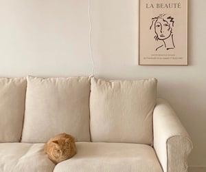 art, cat, and desing image
