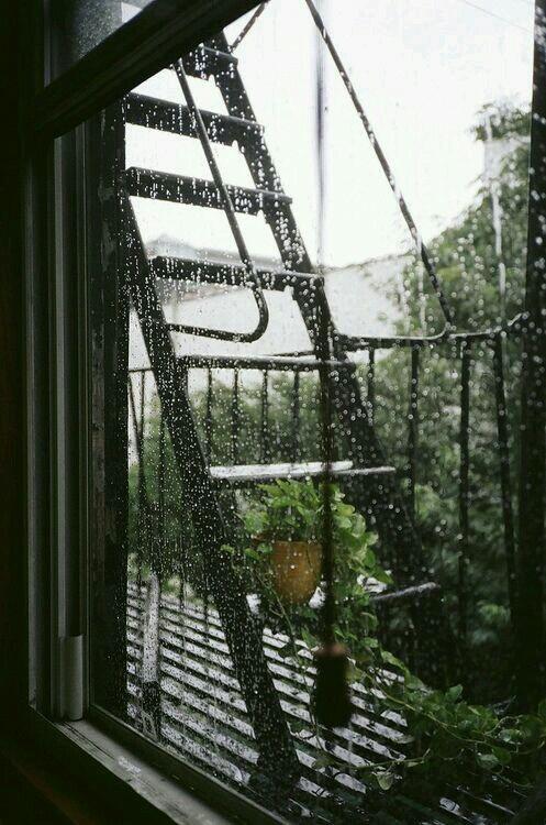 rain, window, and nature image