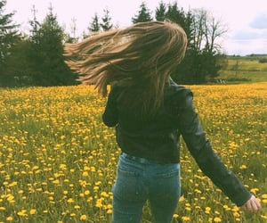 aesthetic, dandelions, and field image