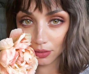 ana de armas and knives out image
