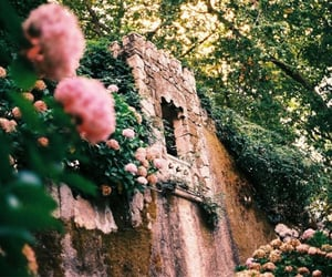 flowers, castle, and nature image