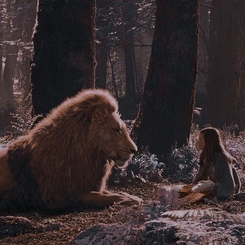 article, movie, and narnia image