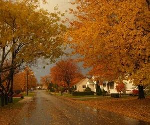 autumn, dresses, and wedding image