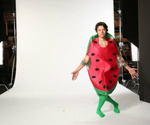 Harry Styles, harry, and watermelon sugar image