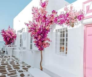 Greece and white houses image