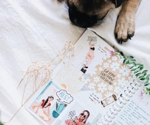 dogs, animals, and journaling image