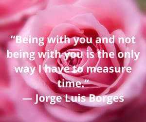 quotes about love, quotestags, and quotes on life image