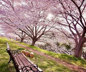 spring, exteriores, and paisajes image