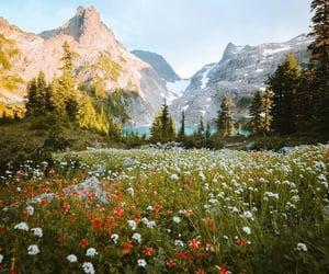 Alpine Lake  @eve365