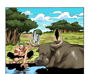 roronoa zoro and one piece manga image
