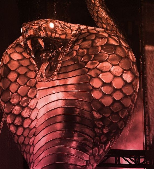 concert, Taylor Swift, and reputation era image