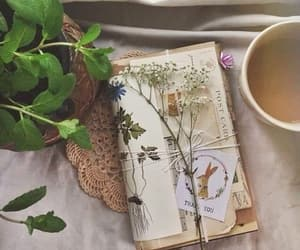 plants, flowers, and book image