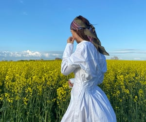 bandana, colorful, and field image