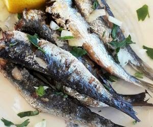 dish, food, and fish image