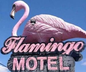 aesthetic, flamingo, and life image