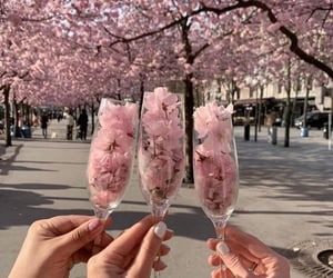 beautiful, date, and drink image