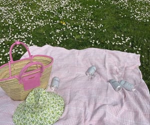 aesthetic, picnic, and pink image