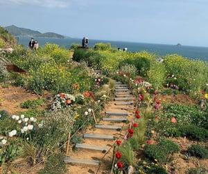flowers, green, and korea image