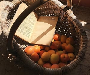 book, fruit, and aesthetic image