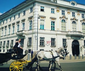 austria, carriage, and home image