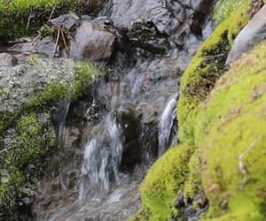 gif, nature, and waterfalls image
