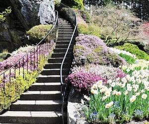 botanical garden, stairway, and saanich peninsula image