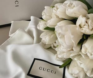 flores, flowers, and gucci image