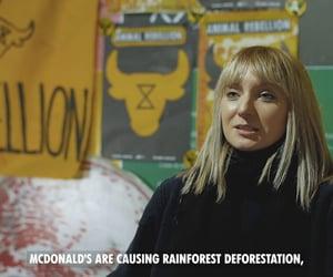 Amazon, burger, and destruction image