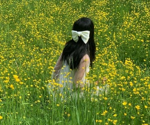 fashion, field, and green image