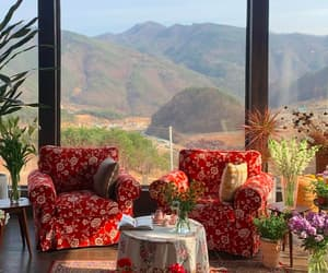 armchair, atmosphere, and flowers image