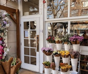 colorful, florist, and flowers image