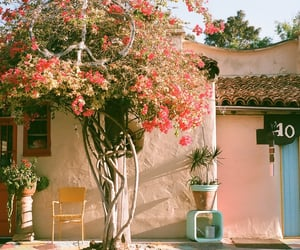 kinda, townhouse, and guessing san diego image