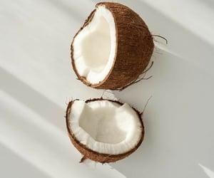 coconut, aesthetic, and white image