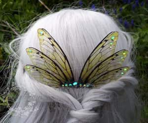 butterfly, enchanted, and Fairies image