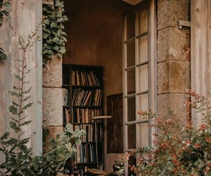 book, aesthetic, and plants image