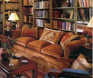 books and home library image