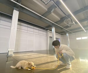 dog, hyungwon, and chae hyungwon image