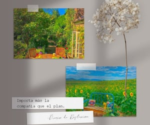 day, frases, and flowers image