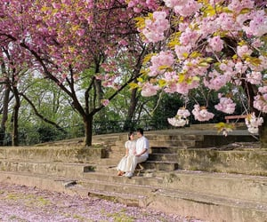 cherry blossom, couple, and green image