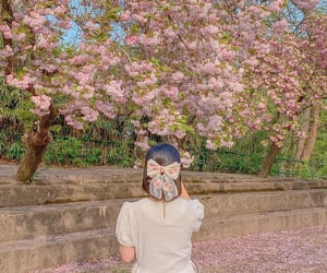 bow, cherry blossom, and fashion image