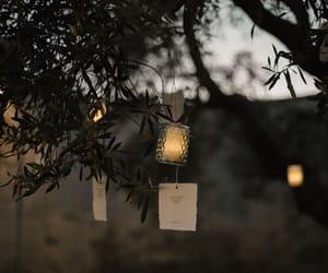 garden, candlelights, and weddingphotography image