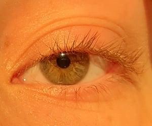 eye, eyelashes, and hazel image