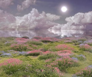 aesthetic, flowers, and clouds image
